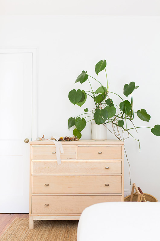 light wood desk with green plant in vase. / sfgirlbybay