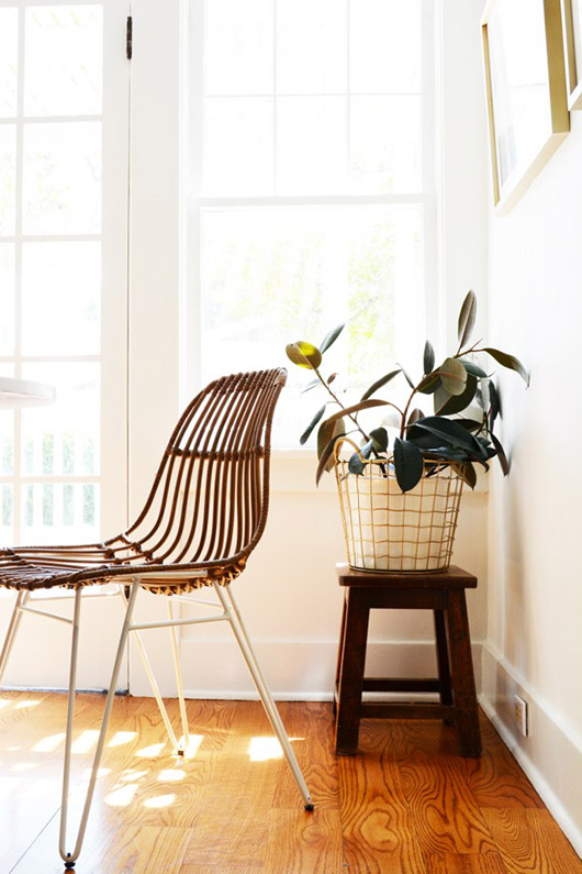 modern rattan chair and wire basket with plant. / sfgirbybay