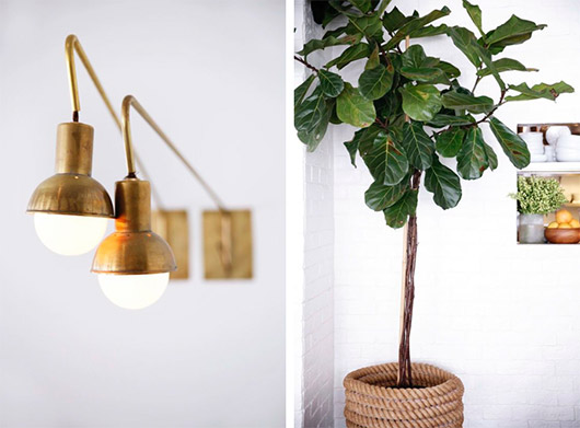 brass wall sconce lights and fiddle leaf fig tree in rope basket. / sfgirlbybay