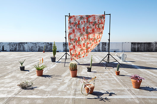 rooftop garden textiles collection by skinny laminx. / sfgirlbybay