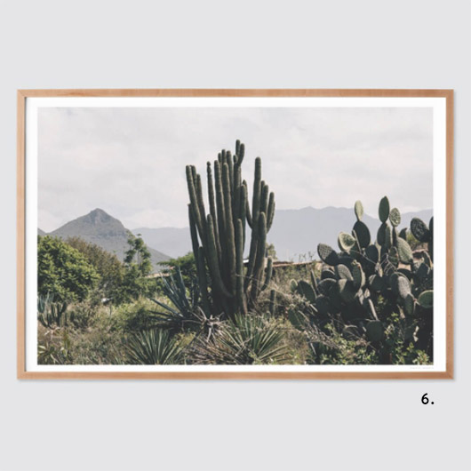 OAXACA .01 print BY ANDREW SHEPHERD via the citizenry. / sfgirlbybay