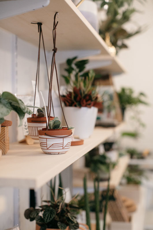 potted and hanging plants at folia. / sfgirlbybay