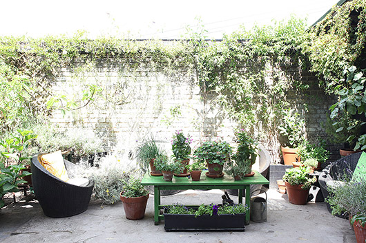 light locations plant-filled courtyard. / sfgirlbybay