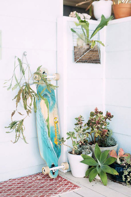 skateboard and potted succulents on porch. / sfgirlbybay