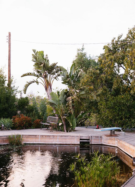natural pool surrounded by wood deck with diving board. / sfgirlbybay