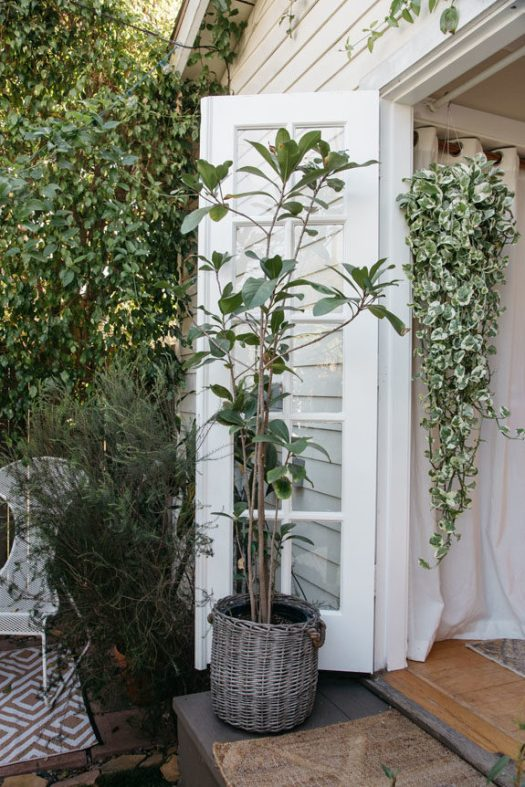 green houseplants in venice canals tiny home tour. / sfgirlbybay