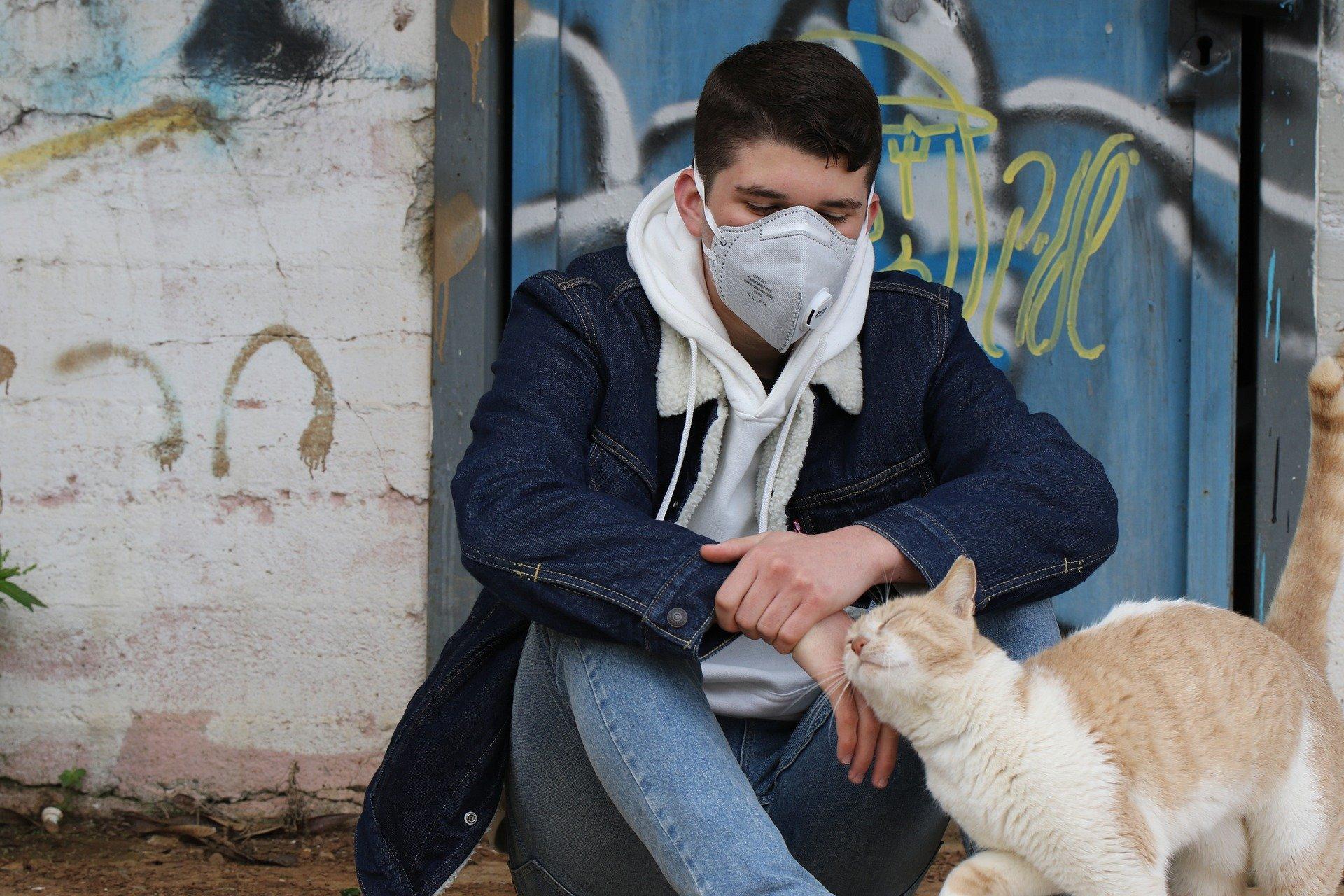 Gatto positivo al COVID-19: gli animali possono infettarsi?