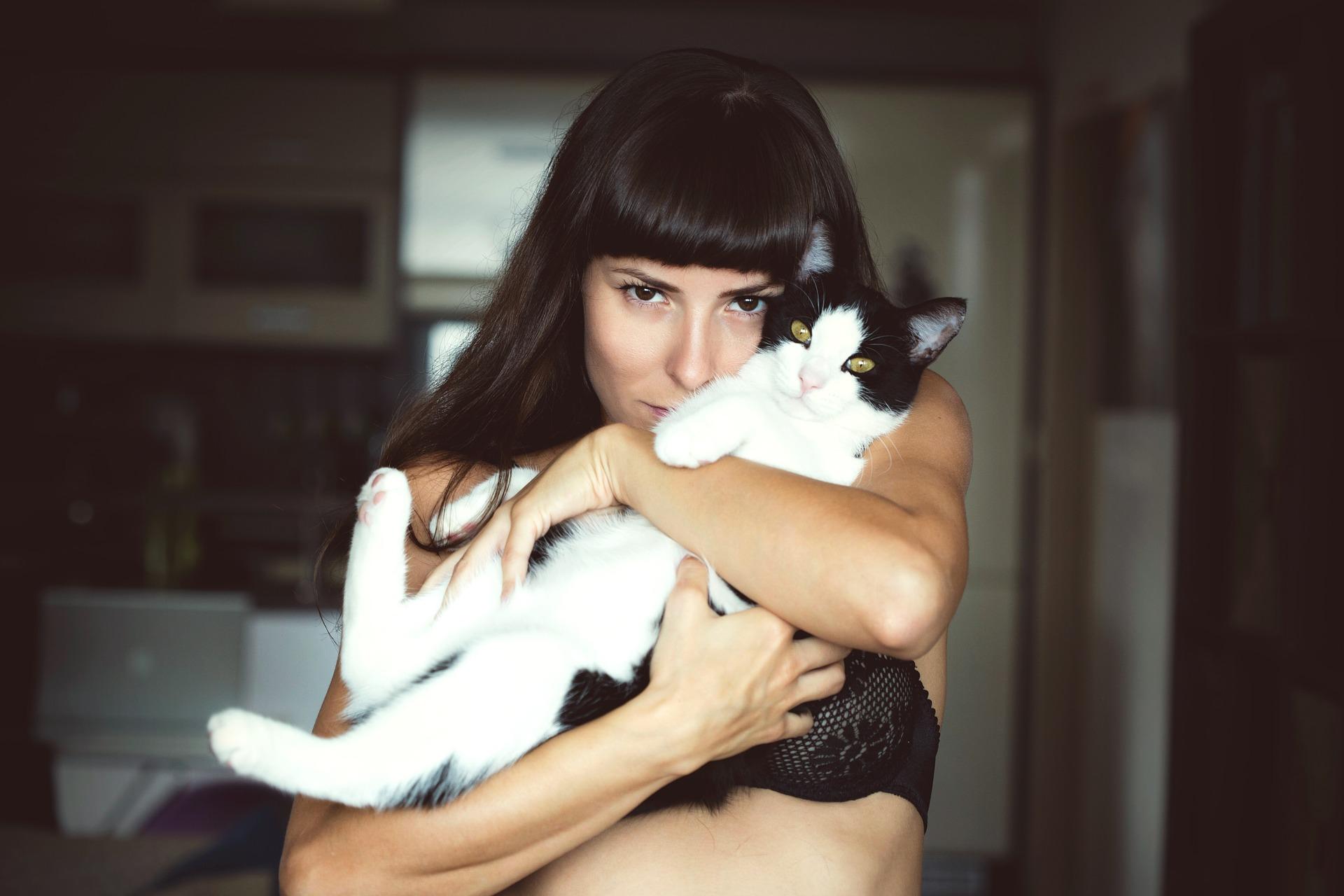 ai gatti piace essere abbracciati
