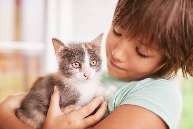 bambina che parla col gatto