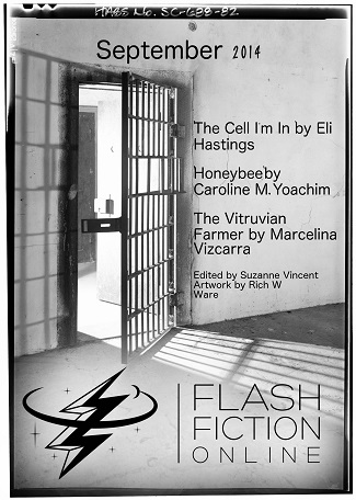 Flash Fiction Online, September 2014