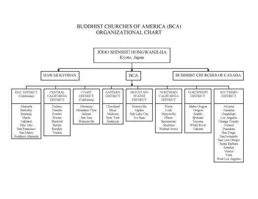 BCA org chart