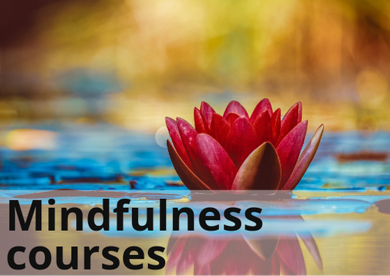 Mindfulness Courses Homepage Image Black on White