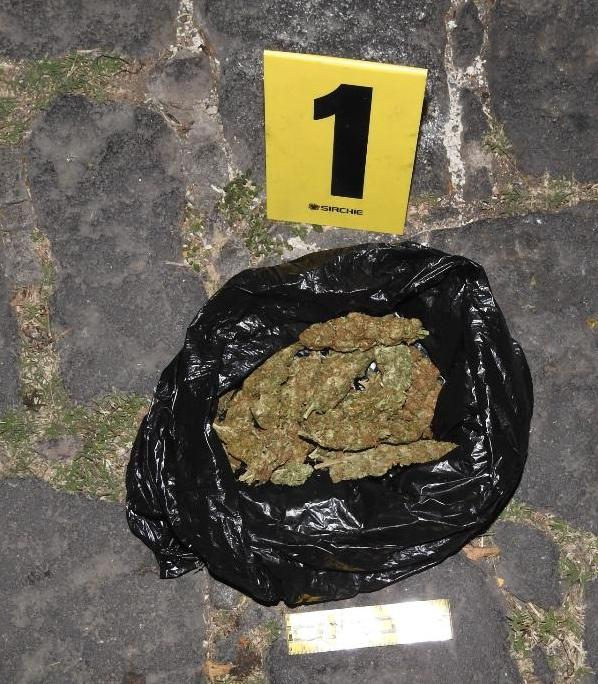 Indicio 1 Marihuana
