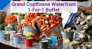 Grand Copthorne Waterfront 1 for 1 buffet
