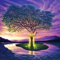 A Árvore Sagrada do Mediterrâneo
