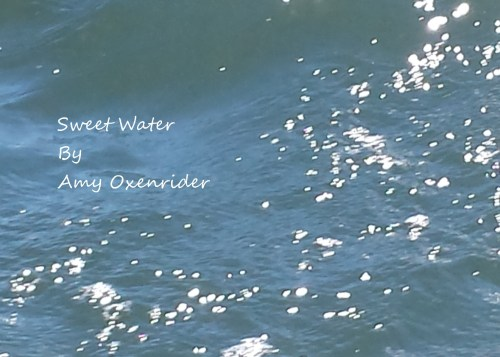 Sweet Water by Amy Oxenrider