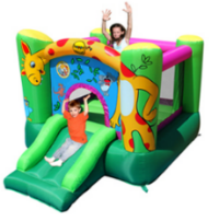 bc047-giraffe-bouncer-with-slideresize