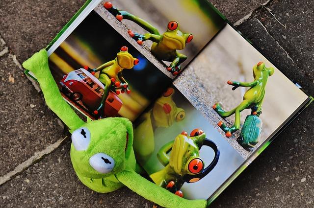 sapo lendo livro