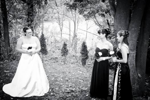 Wedding Party half
