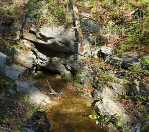 A babbling brook emerges from under sunlit rocks