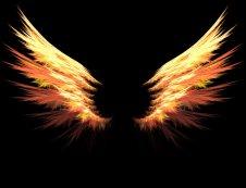 http://img1.wikia.nocookie.net/__cb20130812151702/narutofanon/images/6/6f/Wings.jpg