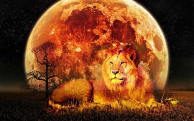 Sirius, The Spiritual Sun, Is Sending Powerful Energies To Earth Through The Lionsgate Portal Lunar-lionsgate