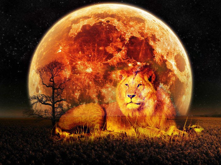 8/7 Lunar Eclipse Full Moon + 8/8 Lion's Gate Energies