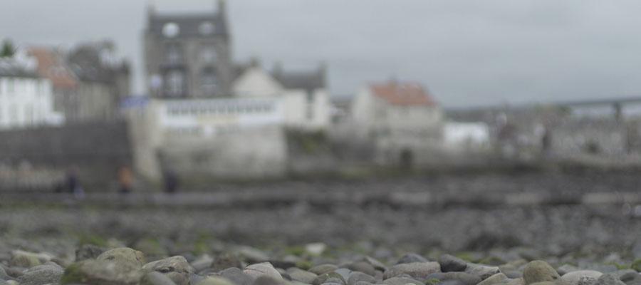 Edinburgh Shoreline South Queensferry Video Community Rock Pool Biodiversity
