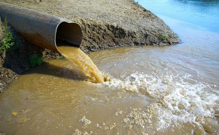 Специалисты природоохранных организаций не нашли в Ростовской области чистых водоёмов