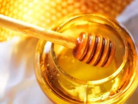 Indian Honey Exporters