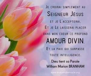Je croirai simplement au Seigneur Jésus et je l'accepterai et je le laisserai placer dans mon coeur ce profond amour divin.