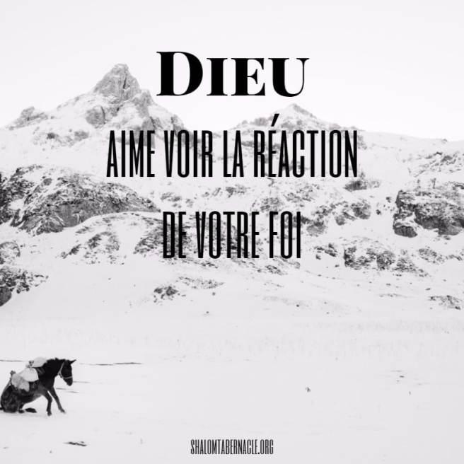 Dieu aime voir la réaction de votre foi...