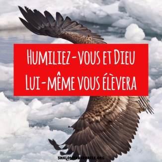 Humiliez-vous et Dieu Lui-même vous élèvera...