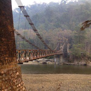 jim-corbett-national-park-in-uttarakhand, tiger-sighting, jungle-safari,