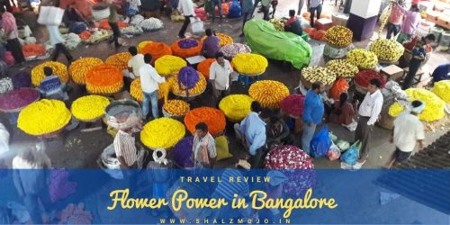 https://www.shalzmojo.in/2019/01/travel-a-visit-to-the-dadar-flower-market-in-mumbai/