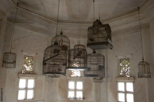 A2Z-BADGE-2017-blogging-challenge-theme-reveal-travel-stories-picture-speaks-louder-than-words-april-shalzmojosays-roadtrip-girltravel-india-Udaipur-palace-Rajasthan-Desert-carrier-pigeons-mail-postman-birdcage-heritage-history-museum-king-royalty
