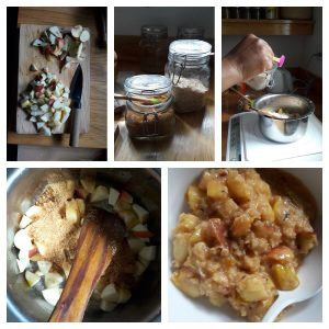 Recipe butter oats cinnamon nutmeg lemon apples Uttarakhand traveldiaries