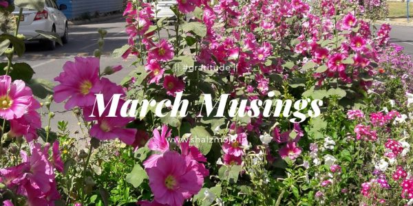 march musings hollyhocks flowers spring gratitude blessings thankfulness