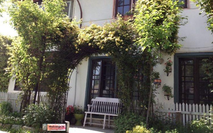 window-fiction-story-kashmir-writing-chair-garden-nature-flowers