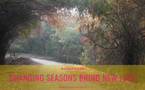 seasons-fallen flowers-autumn-jahapanah city forest- new delhi-morning walk- gratitude