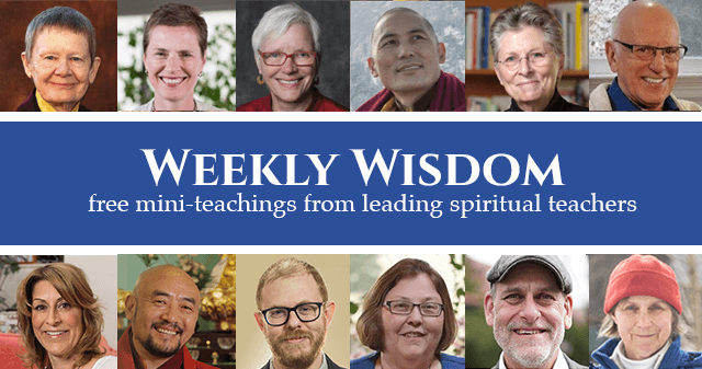 Weekly Wisdom Series sign-up