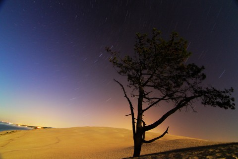 Dune du Pila by night