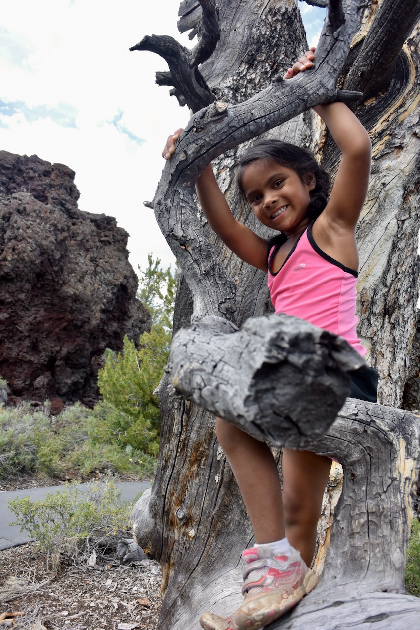 Craters-of-the-Moon-Tree-Climbing