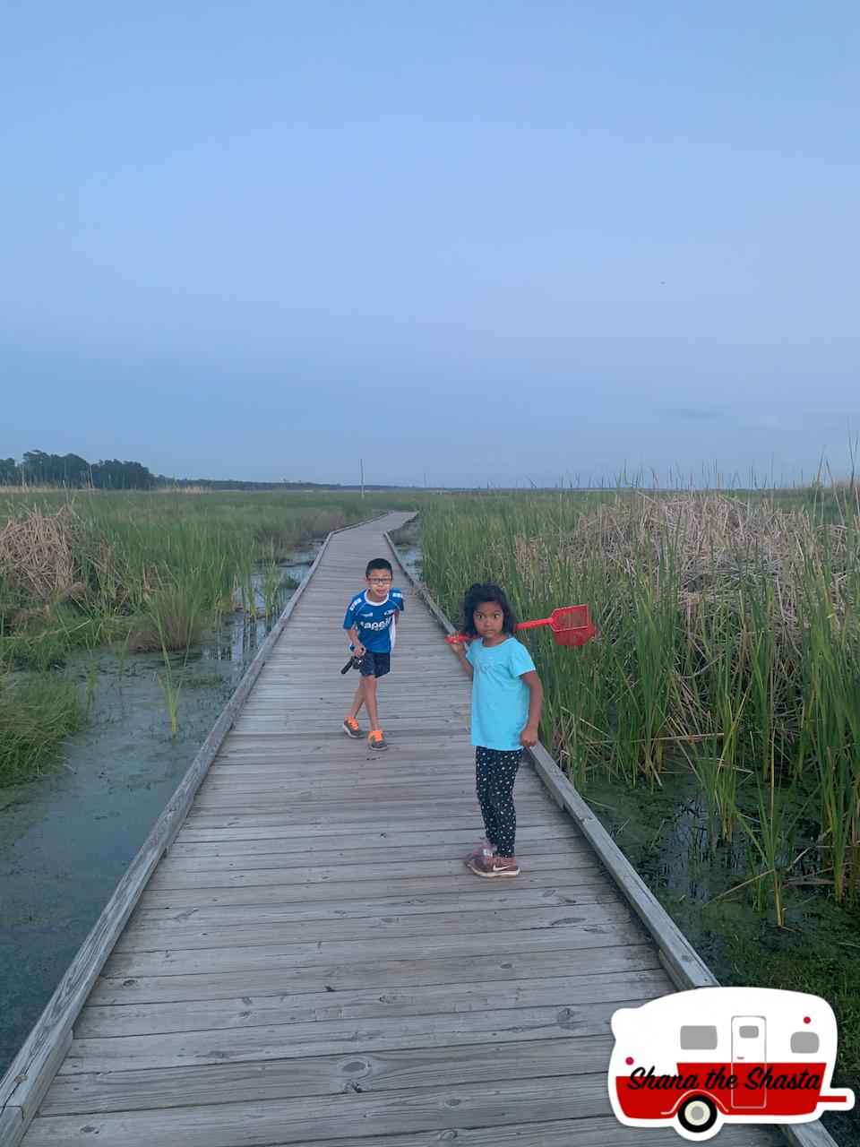 Gator-Boardwalk-at-Fontainebleau