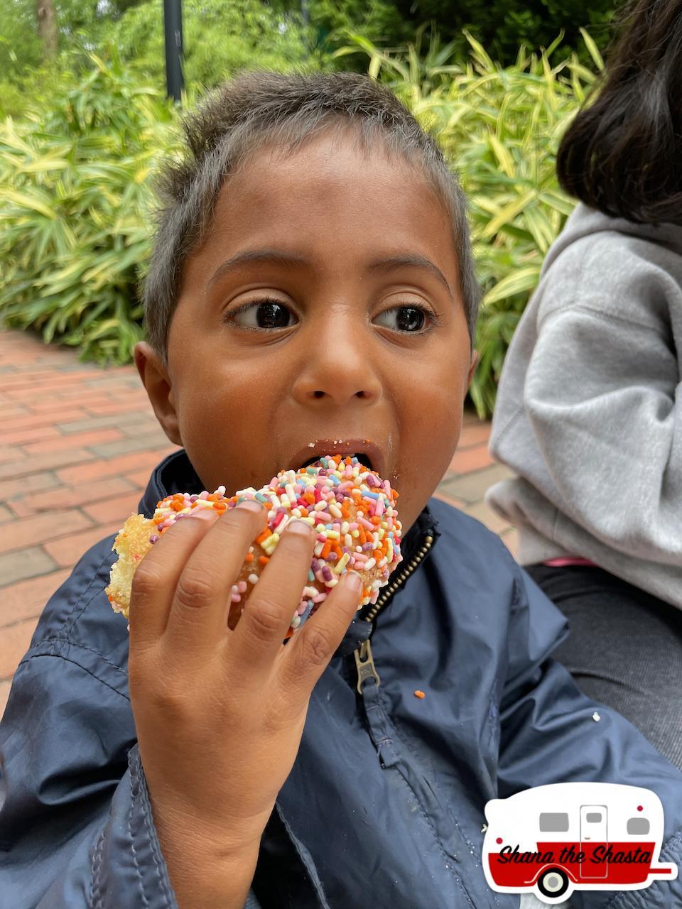 Sprinkled-Dunkin-Donut
