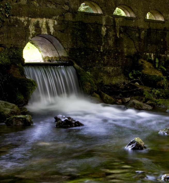 St. Patricks Well, Clonmel, Co. Tipperary - Photo of the Week