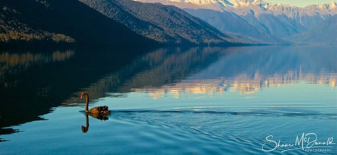 Nelson Lakes, New Zealand - Landscape Photography