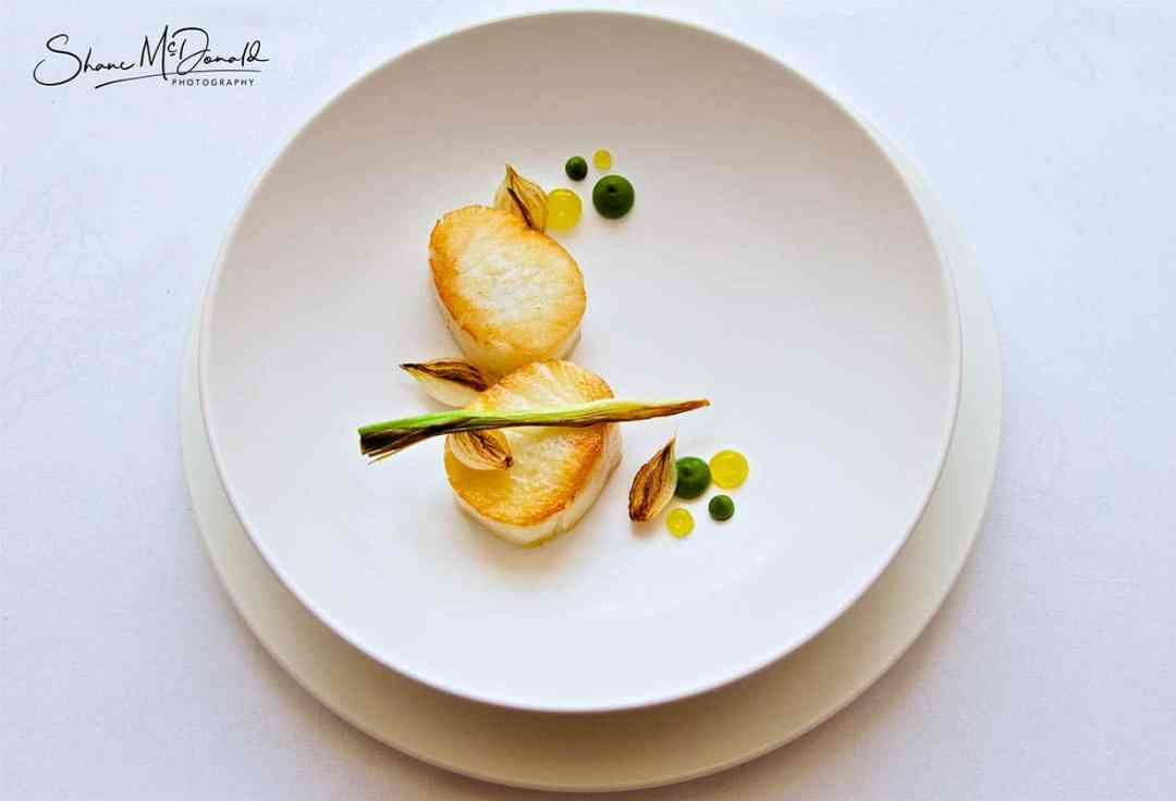 Cod from above - Food Photography