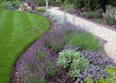 Planting designed for year round interest in this medium sized garden.
