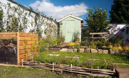 wildlife garden, Bute Park Cardiff, My Wild Garden, Wildlife Trust